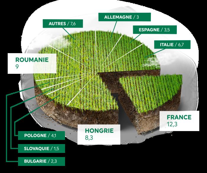 La France est le premier producteur européen de maïs en volume
